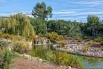 Beautiful Large Pond